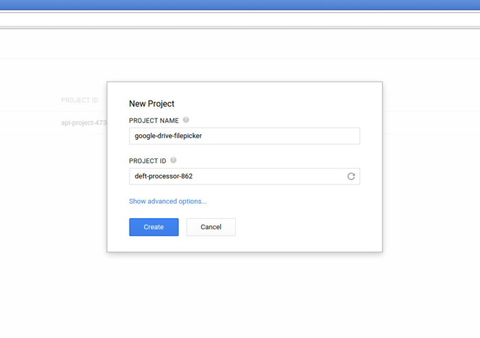 Choose Create New Project in your google account
