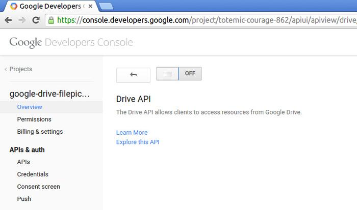 Turn the Drive API ON