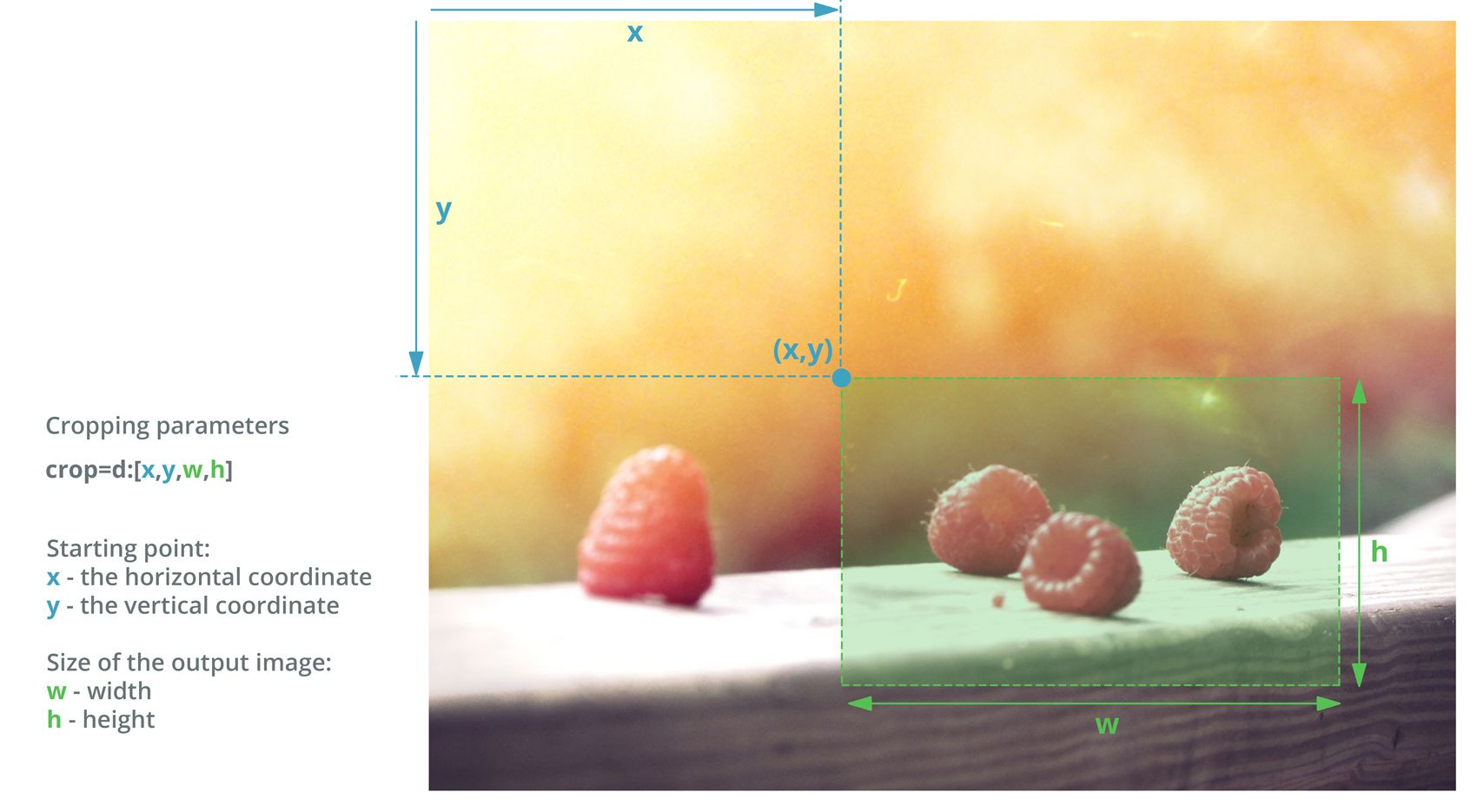 Example image demonstrating how the Filestack cropping function works